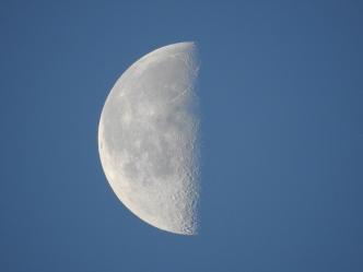 Moon - 1-27-2019 #2