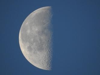 Moon - 1-27-2019 #3